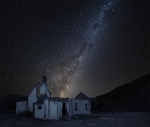 IC-Hon Bronze-001-1356164-Star lit night-Willie Henegan